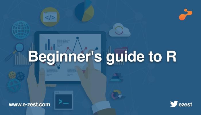 Beginner's guide to R.jpg